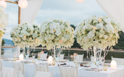 THE MAGICAL WORLD OF WEDDINGS